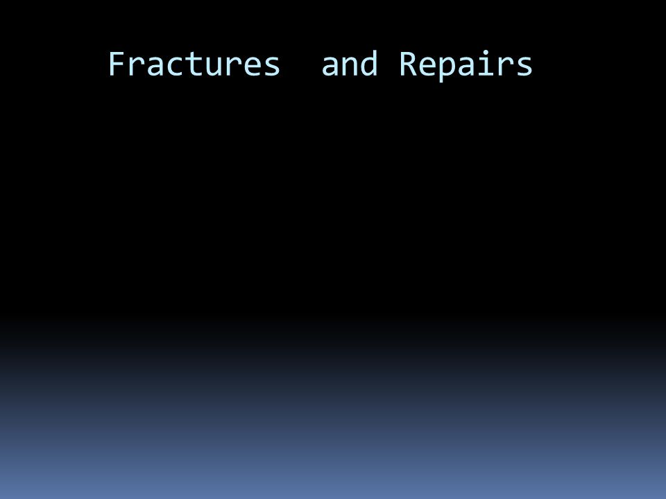 Fractures and Repairs