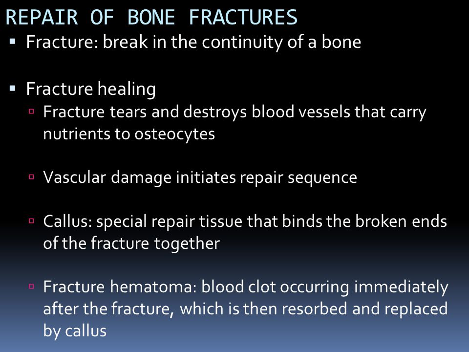 REPAIR OF BONE FRACTURES Fracture: break in the continuity of a bone Fracture healing Fracture tears and destroys blood vessels that carry nutrients t