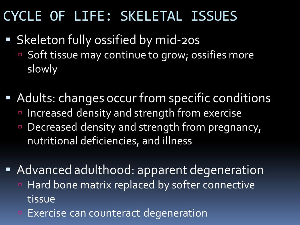 CYCLE OF LIFE: SKELETAL ISSUES Skeleton fully ossified by mid-20s Soft tissue may continue to grow; ossifies more slowly Adults: changes occur from sp