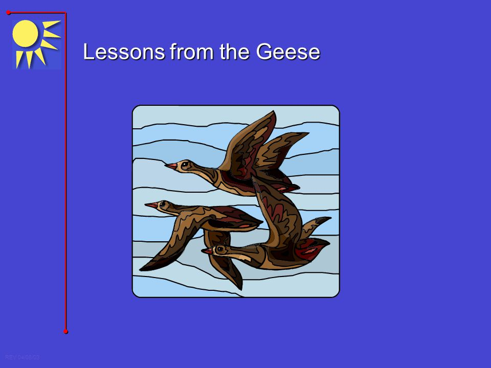 REV 04/08/03 Lessons from the Geese