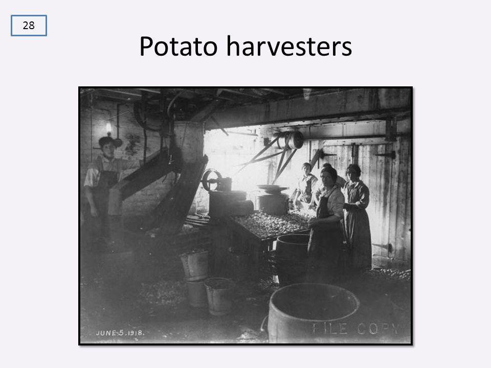 Potato harvesters 28