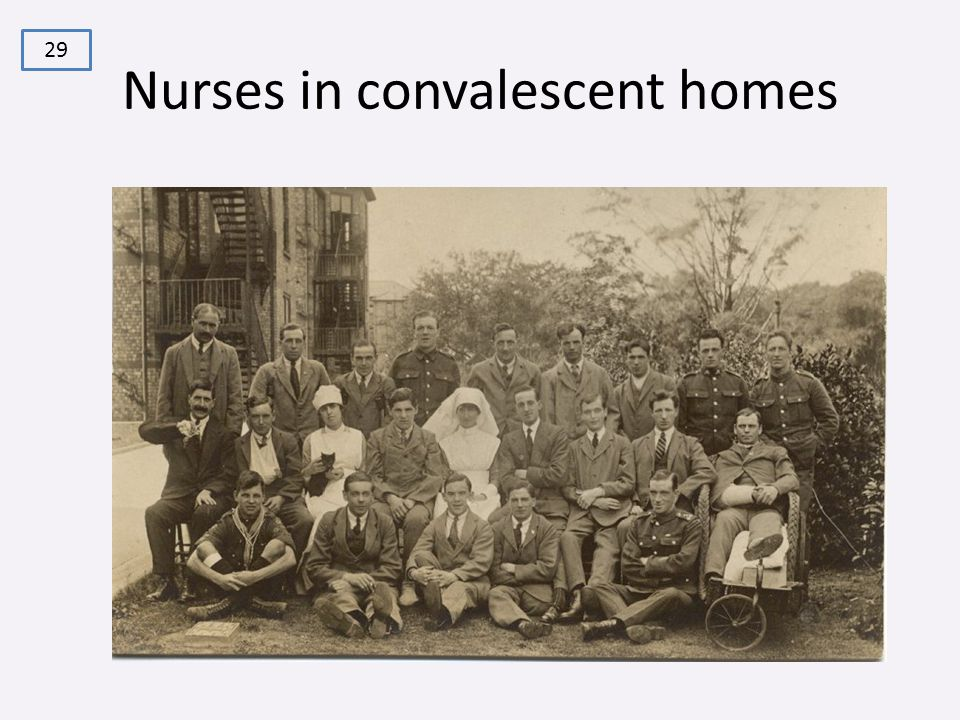 Nurses in convalescent homes 29
