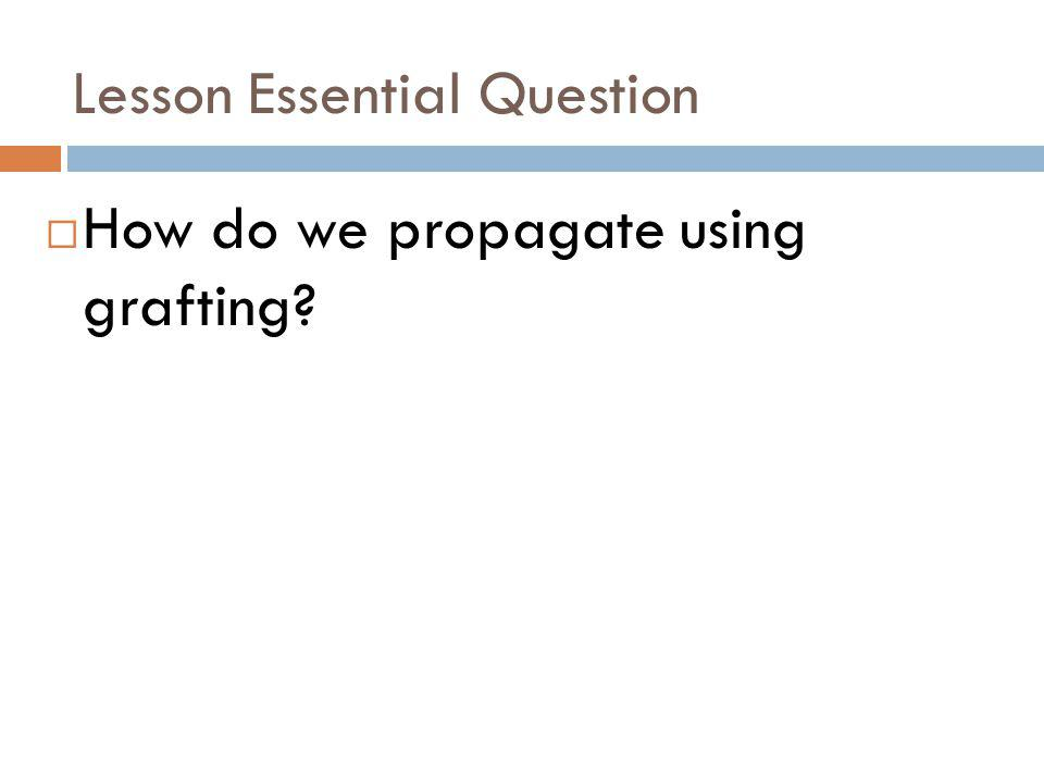 Lesson Essential Question How do we propagate using grafting?