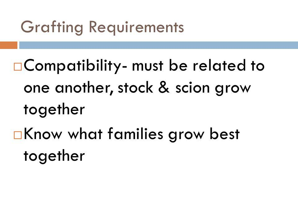 Grafting Requirements Compatibility- must be related to one another, stock & scion grow together Know what families grow best together