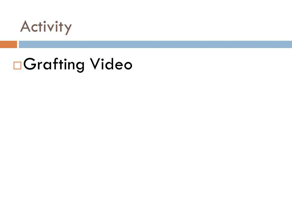 Activity Grafting Video
