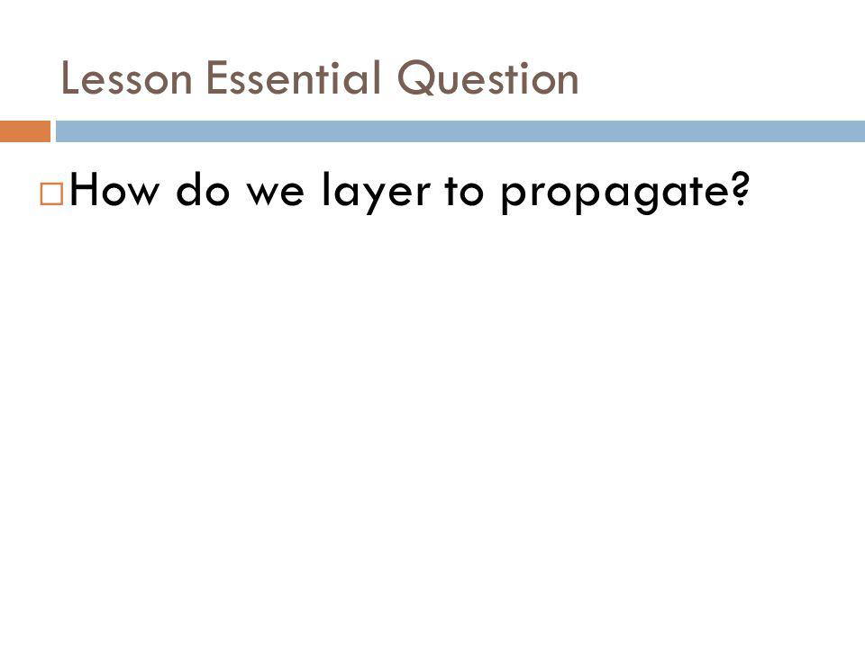 Lesson Essential Question How do we layer to propagate?