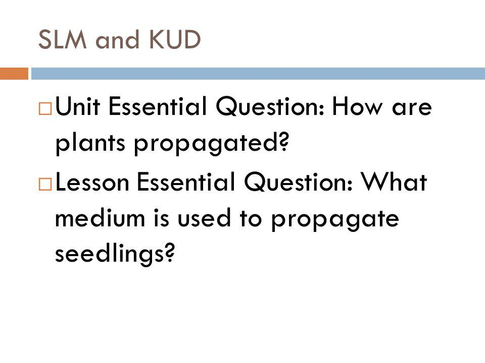 Indirect seeding Process in which seed is sown in a place separate from where the plants will eventually grow Transplanting happens 1 or 2 more times