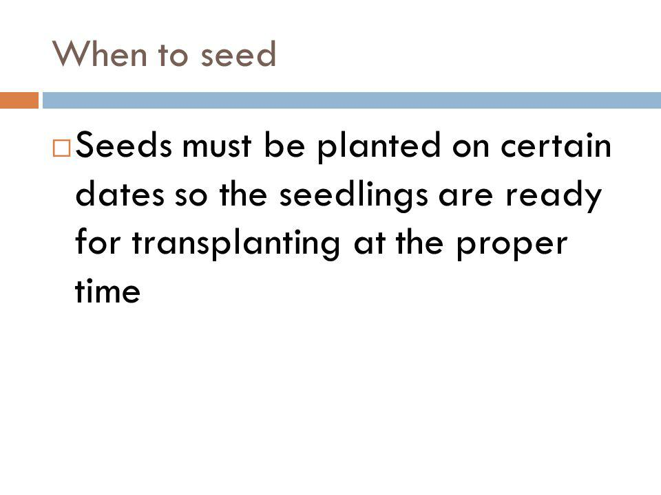 When to seed Seeds must be planted on certain dates so the seedlings are ready for transplanting at the proper time