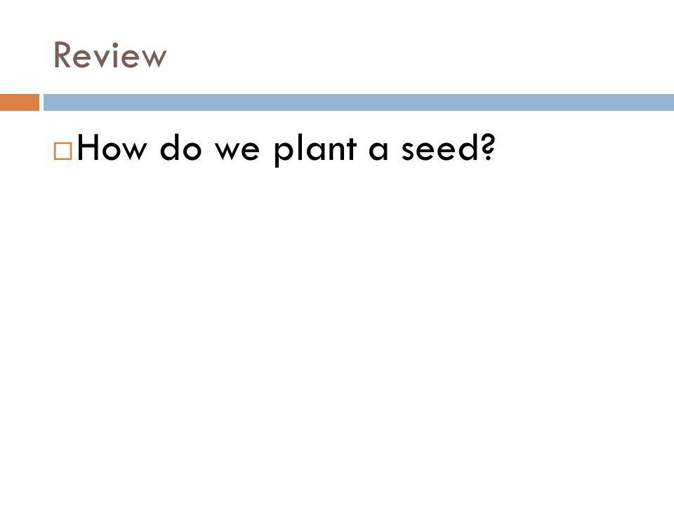 Review How do we plant a seed?
