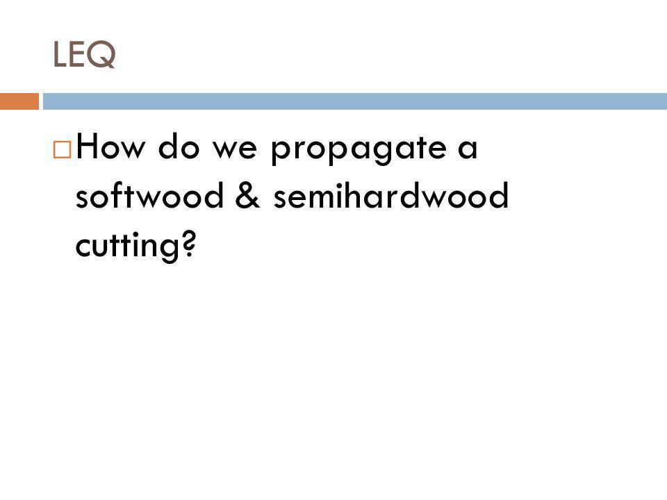 LEQ How do we propagate a softwood & semihardwood cutting?