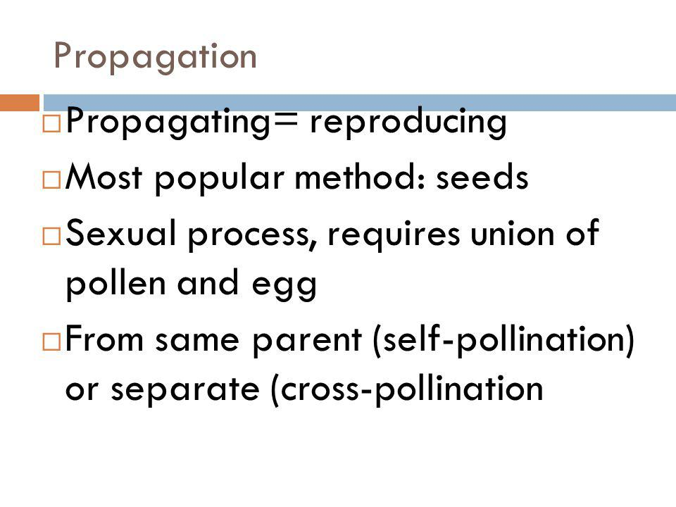 Lesson Essential Question What is the process of budding propagation?