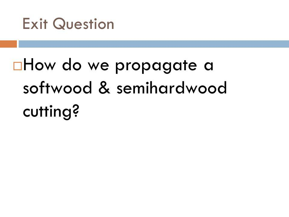 Exit Question How do we propagate a softwood & semihardwood cutting?