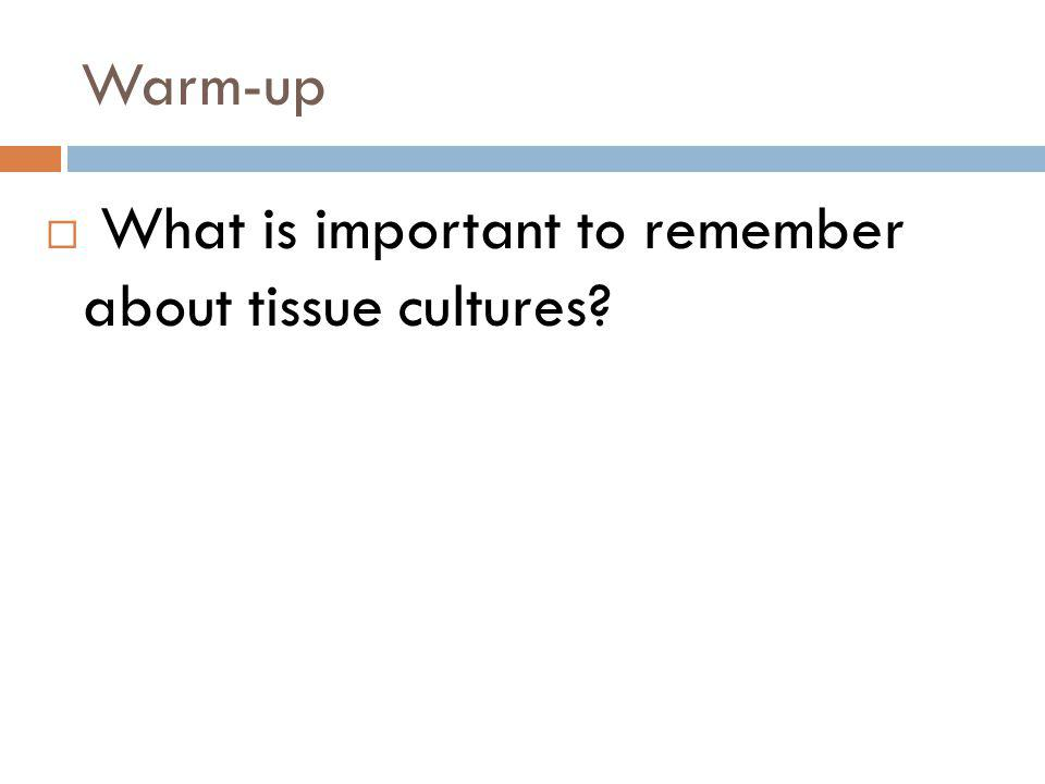 Warm-up What is important to remember about tissue cultures?