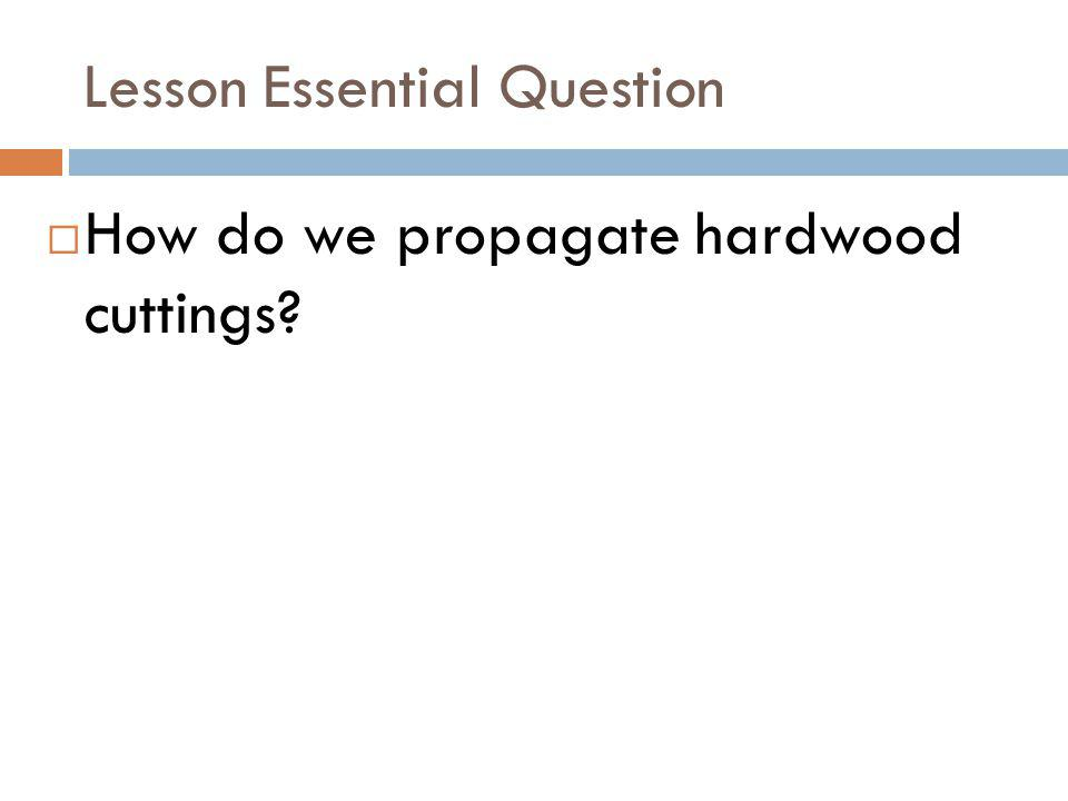 Lesson Essential Question How do we propagate hardwood cuttings?