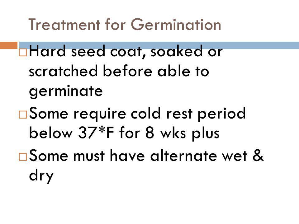 PLANT PROPAGATION Separation & Division