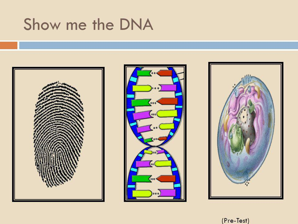 Georgia Performance Standards SB2 Students will analyze how biological traits are passed on to successive generations. a. Distinguish between DNA and