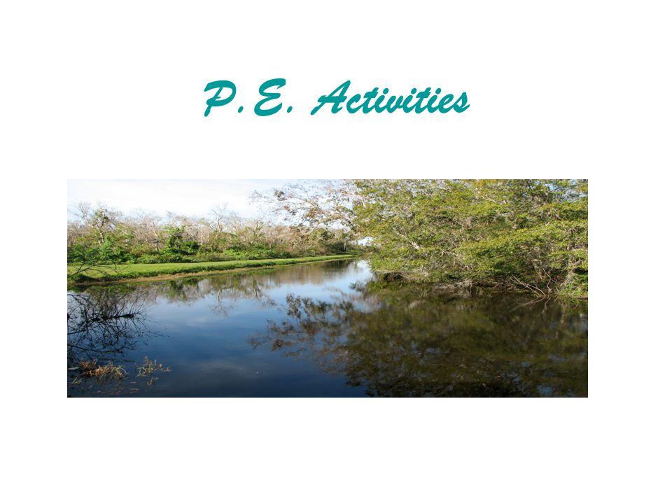 P.E. Activities