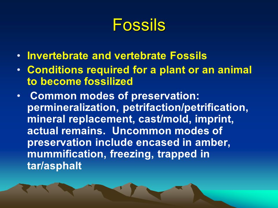 Fossils Invertebrate and vertebrate Fossils Conditions required for a plant or an animal to become fossilized Common modes of preservation: permineral