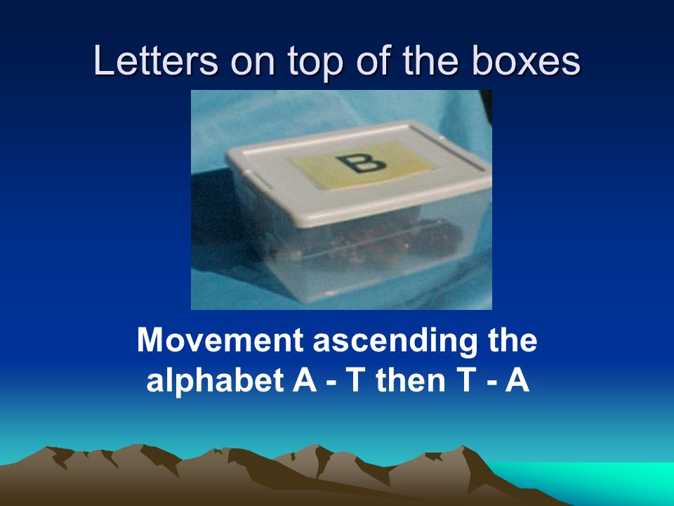 Letters on top of the boxes Movement ascending the alphabet A - T then T - A