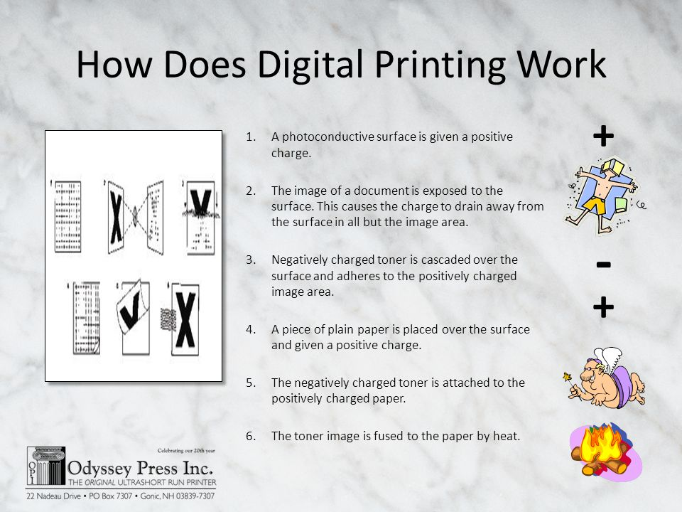 How Does Digital Printing Work 1.A photoconductive surface is given a positive charge.