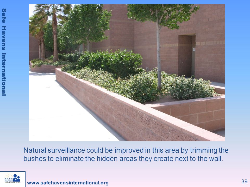 39 Natural surveillance could be improved in this area by trimming the bushes to eliminate the hidden areas they create next to the wall.