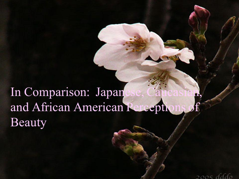 In Comparison: Japanese, Caucasian, and African American Perceptions of Beauty