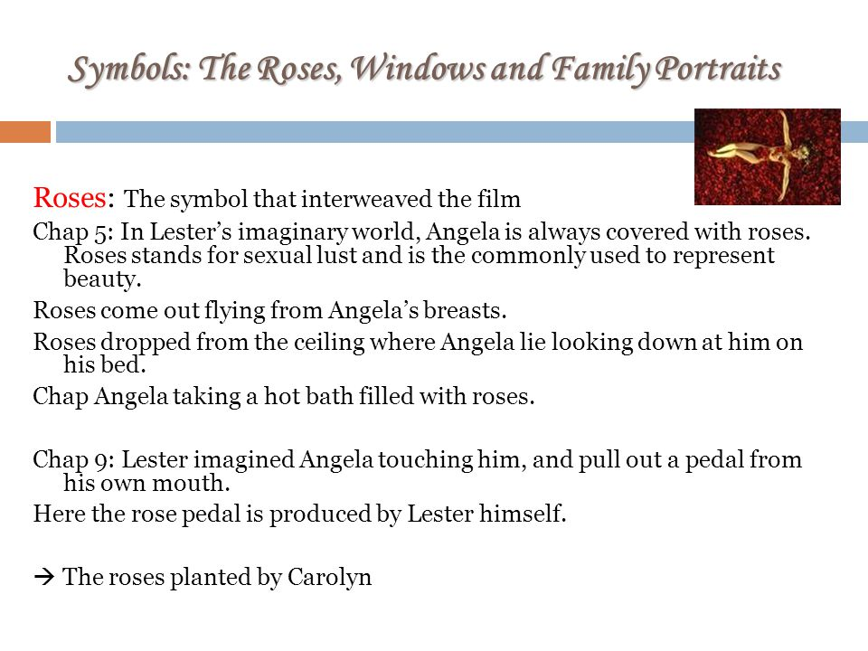 Symbols: The Roses, Windows and Family Portraits Roses: The symbol that interweaved the film Chap 5: In Lesters imaginary world, Angela is always covered with roses.
