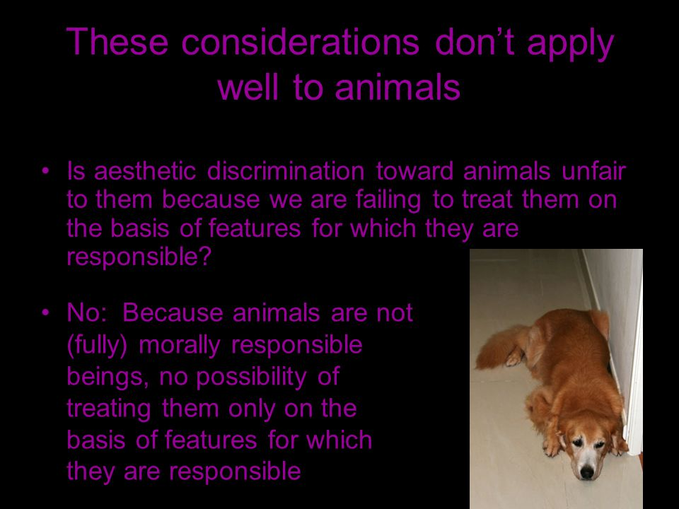 These considerations dont apply well to animals Is aesthetic discrimination toward animals unfair to them because we are failing to treat them on the basis of features for which they are responsible.