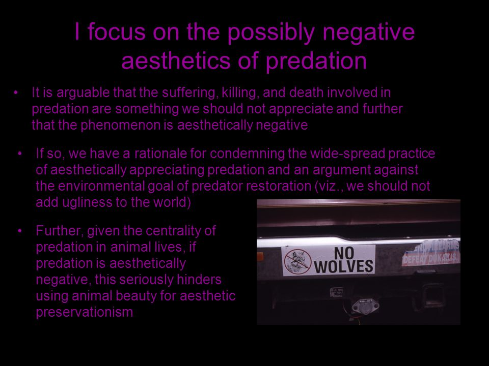I focus on the possibly negative aesthetics of predation It is arguable that the suffering, killing, and death involved in predation are something we should not appreciate and further that the phenomenon is aesthetically negative If so, we have a rationale for condemning the wide-spread practice of aesthetically appreciating predation and an argument against the environmental goal of predator restoration (viz., we should not add ugliness to the world) Further, given the centrality of predation in animal lives, if predation is aesthetically negative, this seriously hinders using animal beauty for aesthetic preservationism