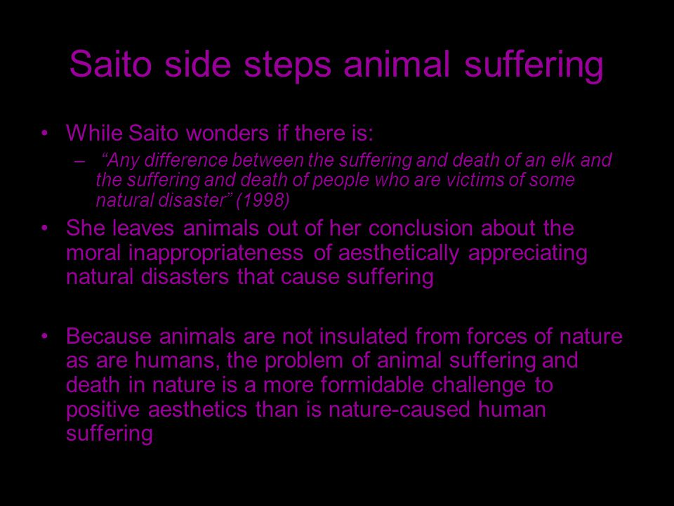 Saito side steps animal suffering While Saito wonders if there is: – Any difference between the suffering and death of an elk and the suffering and death of people who are victims of some natural disaster (1998) She leaves animals out of her conclusion about the moral inappropriateness of aesthetically appreciating natural disasters that cause suffering Because animals are not insulated from forces of nature as are humans, the problem of animal suffering and death in nature is a more formidable challenge to positive aesthetics than is nature-caused human suffering