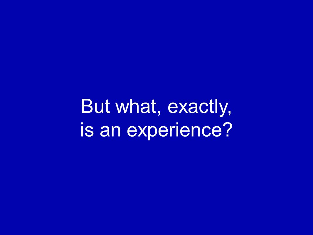 But what, exactly, is an experience?