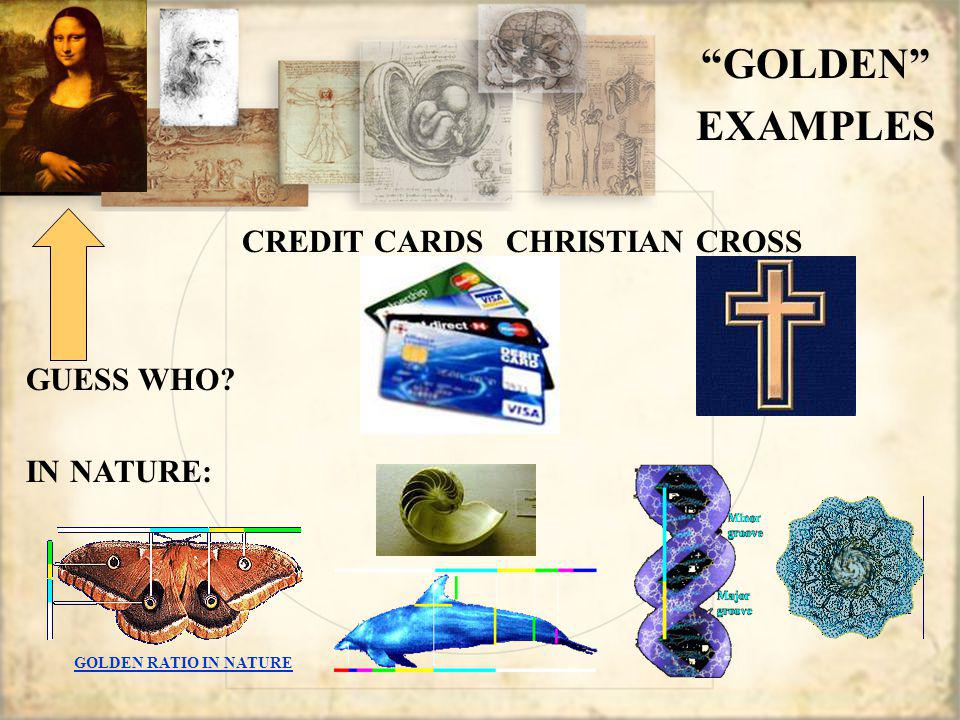 CREDIT CARDS CHRISTIAN CROSS GUESS WHO IN NATURE: GOLDEN EXAMPLES GOLDEN RATIO IN NATURE