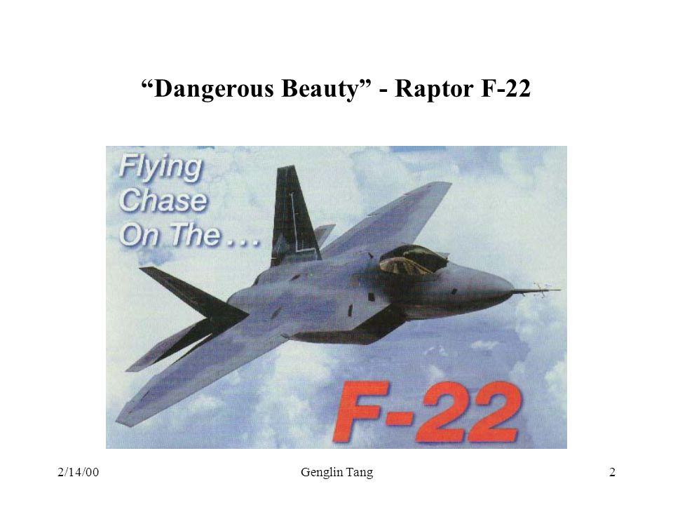 2/14/00Genglin Tang2 Dangerous Beauty - Raptor F-22