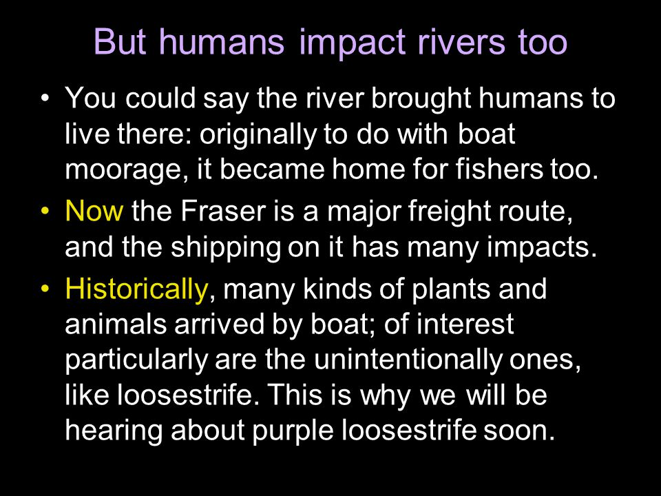 But humans impact rivers too You could say the river brought humans to live there: originally to do with boat moorage, it became home for fishers too.