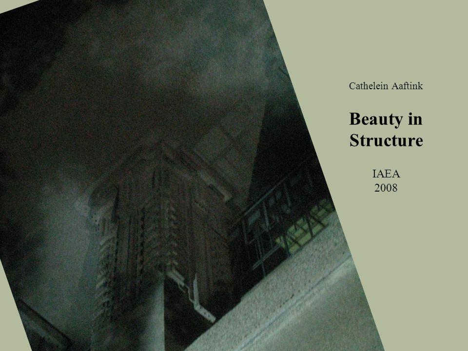 Cathelein Aaftink Beauty in Structure IAEA 2008