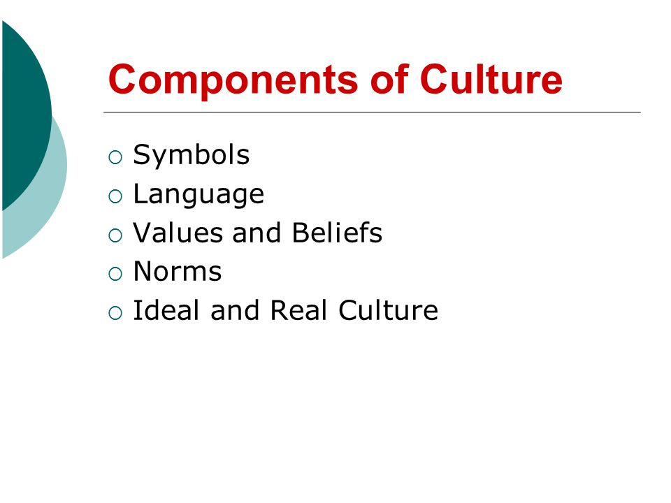 Components of Culture Symbols Language Values and Beliefs Norms Ideal and Real Culture