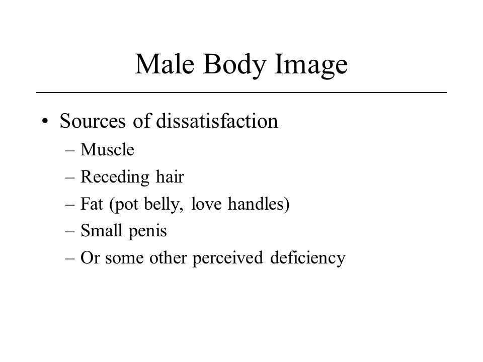 Male Body Image Sources of dissatisfaction –Muscle –Receding hair –Fat (pot belly, love handles) –Small penis –Or some other perceived deficiency