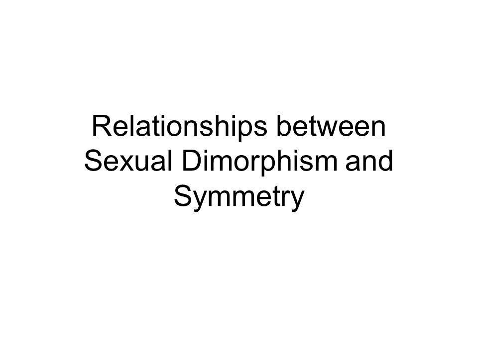 Relationships between Sexual Dimorphism and Symmetry