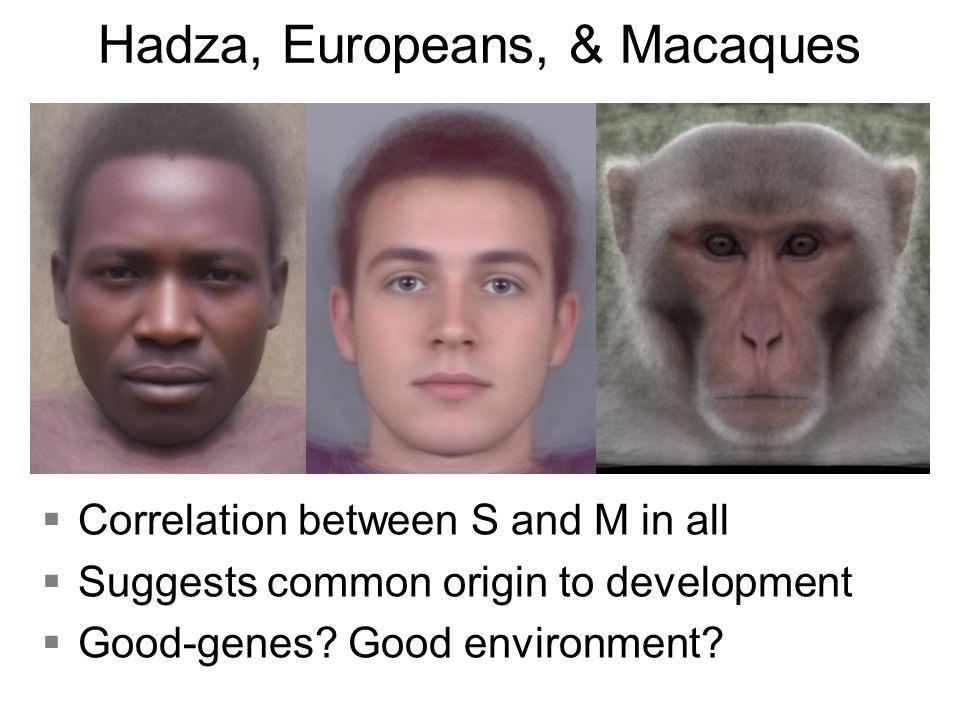 Hadza, Europeans, & Macaques §Correlation between S and M in all §Suggests common origin to development §Good-genes.