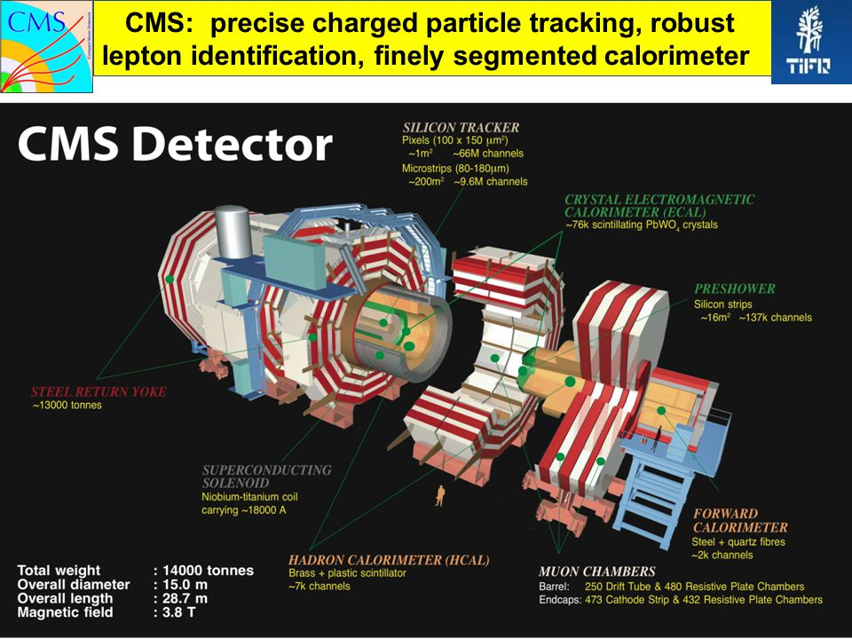 CMS: precise charged particle tracking, robust lepton identification, finely segmented calorimeter