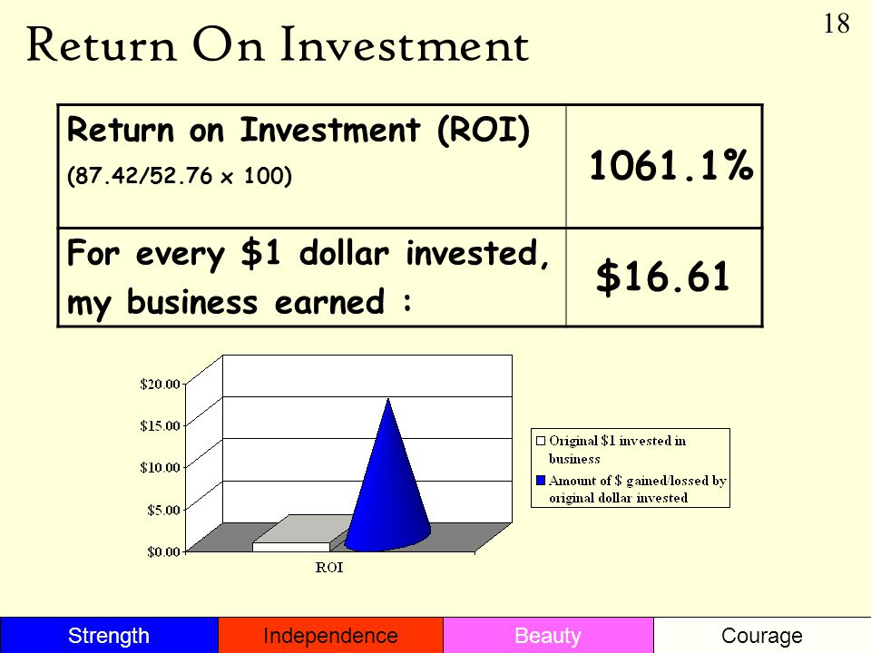 Return On Investment Return on Investment (ROI) (87.42/52.76 x 100) 1061.1% For every $1 dollar invested, my business earned : $16.61 18 StrengthBeautyIndependenceCourage