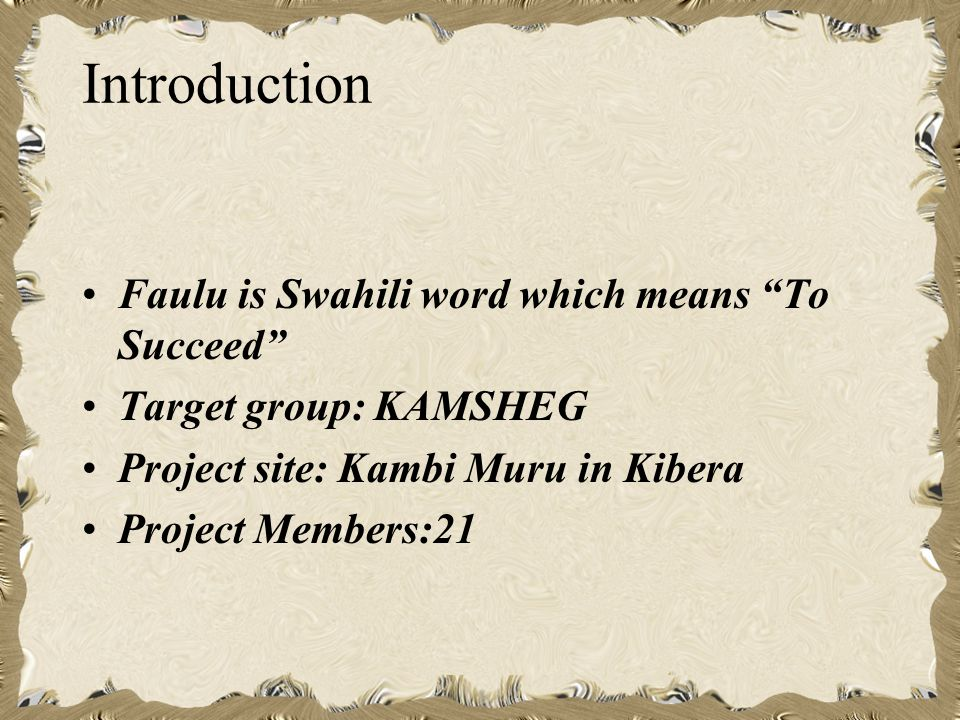 Introduction Faulu is Swahili word which means To Succeed Target group: KAMSHEG Project site: Kambi Muru in Kibera Project Members:21