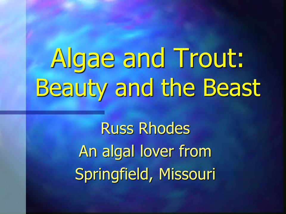 Algae and Trout: Beauty and the Beast Russ Rhodes An algal lover from Springfield, Missouri