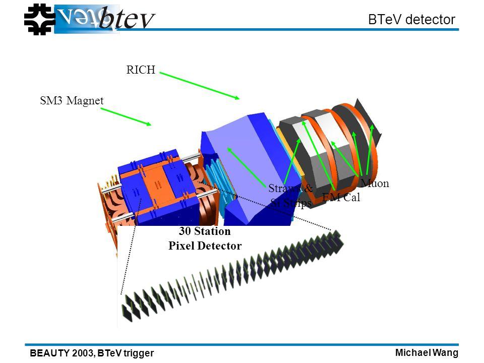 Michael Wang BEAUTY 2003, BTeV trigger BTeV detector Muon EM Cal Straws & Si Strips SM3 Magnet RICH 30 Station Pixel Detector