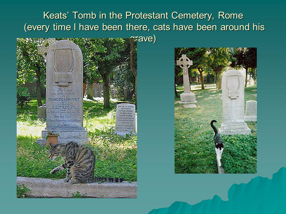 Keats Tomb in the Protestant Cemetery, Rome (every time I have been there, cats have been around his grave)