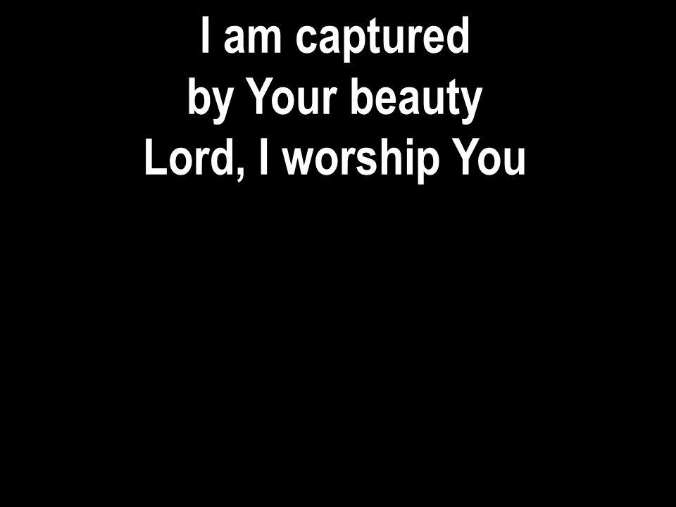 You are awesome You are sovereign, God You are holy, holy Holy, Lord… (repeat…) Israel Houghton and Ricardo Sanchez © 2009 Integrity s Praise.