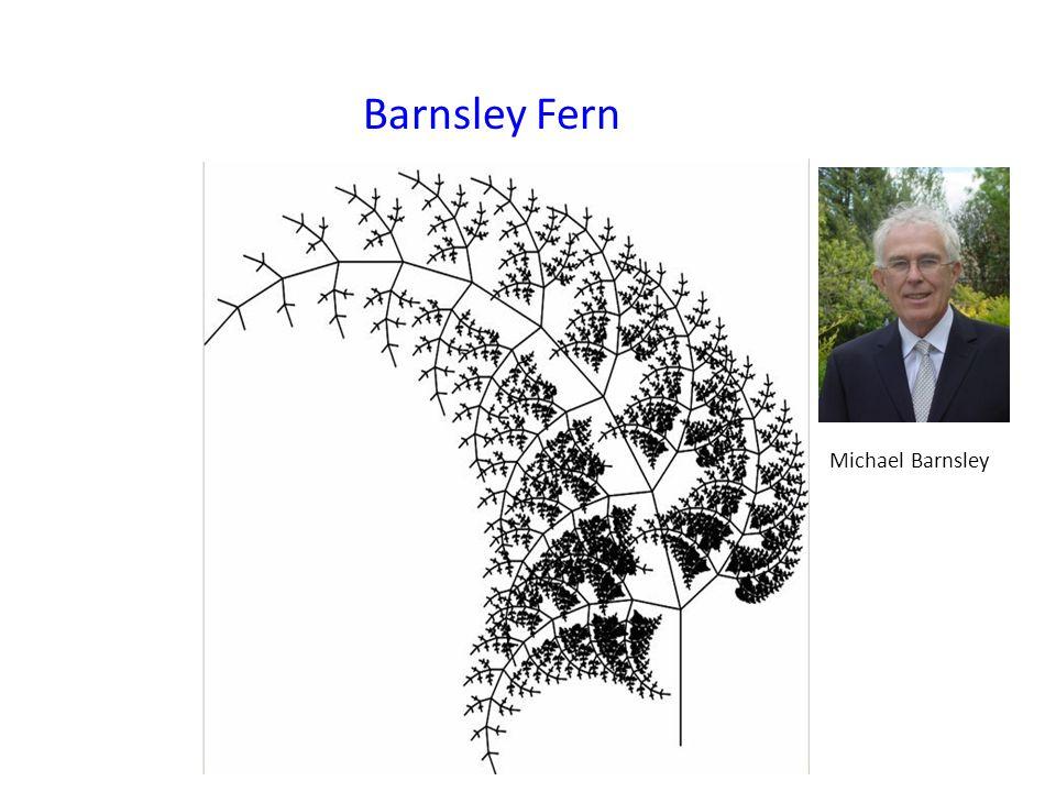 Barnsley Fern Michael Barnsley