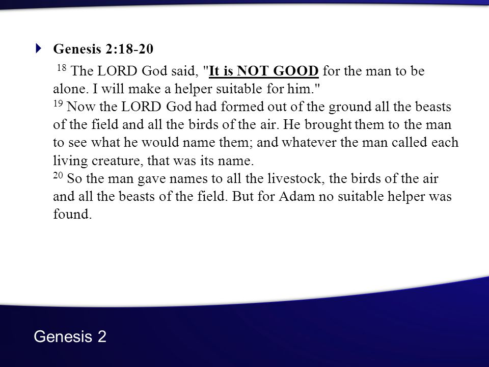 Genesis 2 Genesis 2: The LORD God said, It is NOT GOOD for the man to be alone.