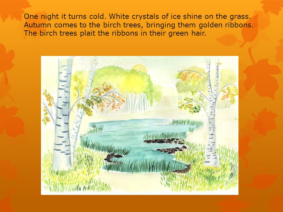 One night it turns cold. White crystals of ice shine on the grass.