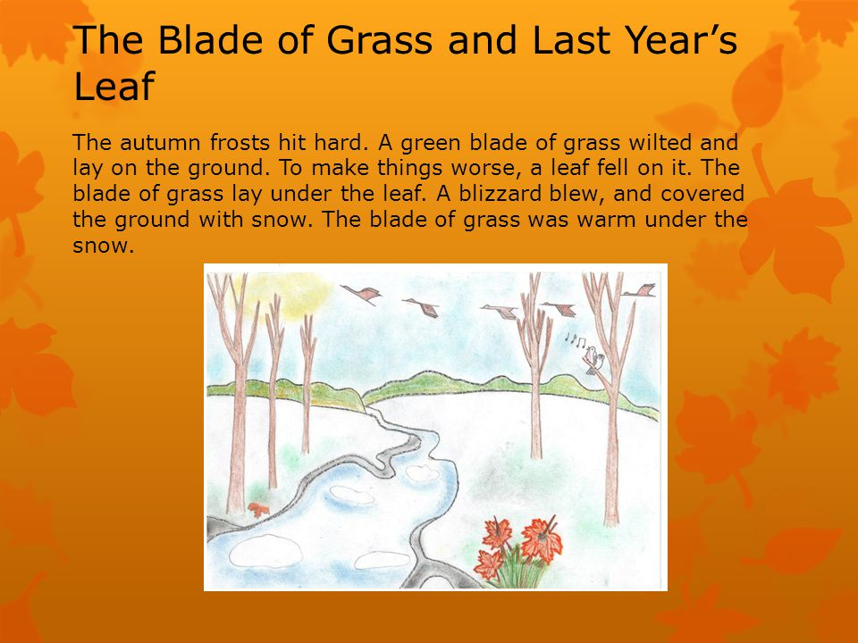 The Blade of Grass and Last Years Leaf The autumn frosts hit hard.